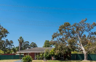 Picture of 46 Storey Road, Thornlie WA 6108