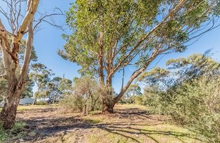 Picture of Lot 1 - 37 - 43 Jansson Road, Rhyll VIC 3923