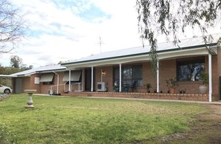 Picture of 188 Lindsay Street, Hay NSW 2711