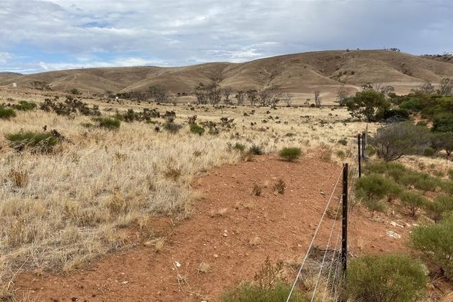 Picture of Lot 449 Pine Crest Road, CAMBRAI SA 5353
