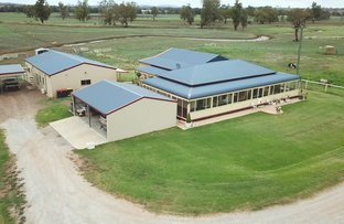 Picture of 418 Nundle Rd, Nemingha NSW 2340