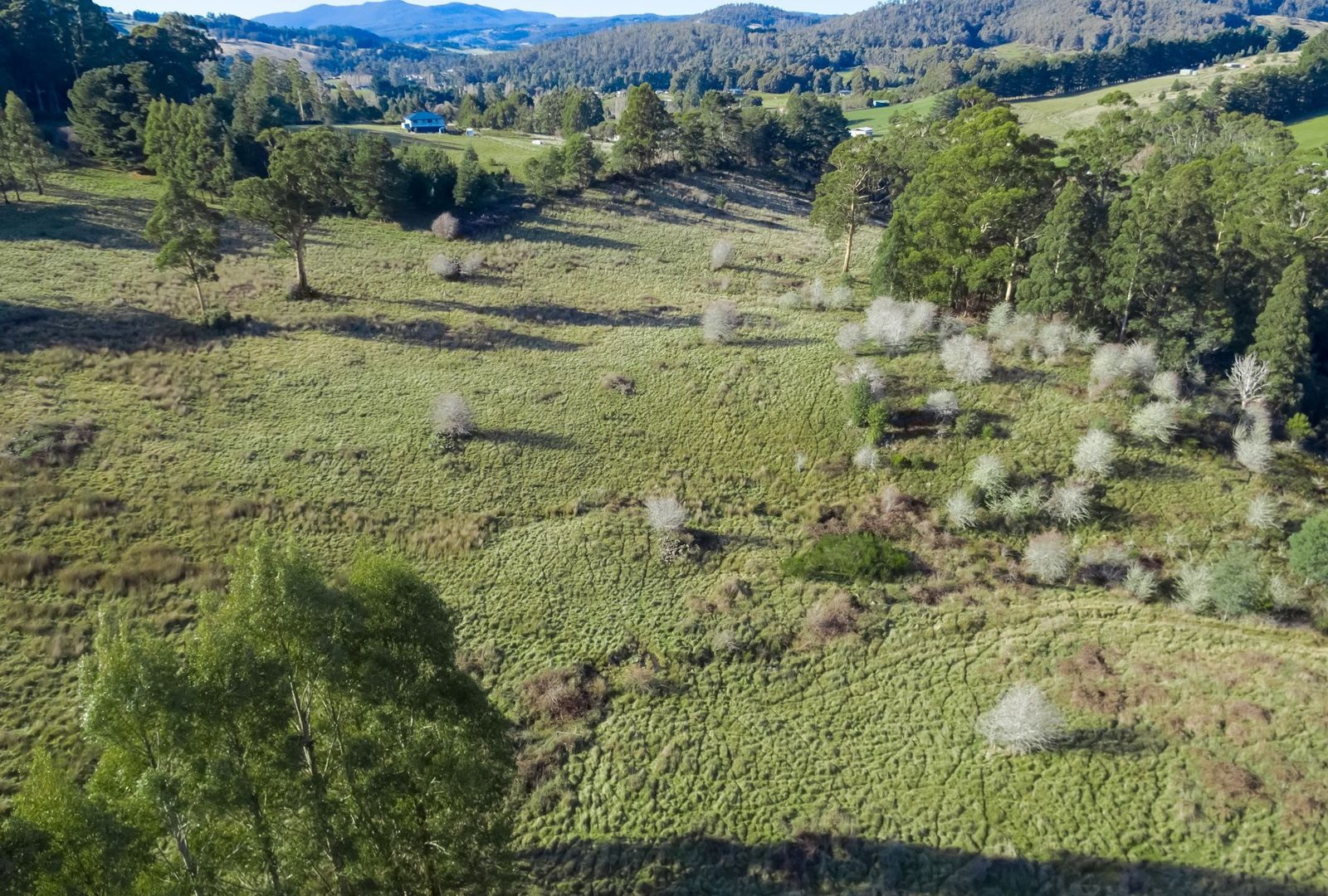 Lot 1 Kermandie River Road, Geeveston TAS 7116, Image 2