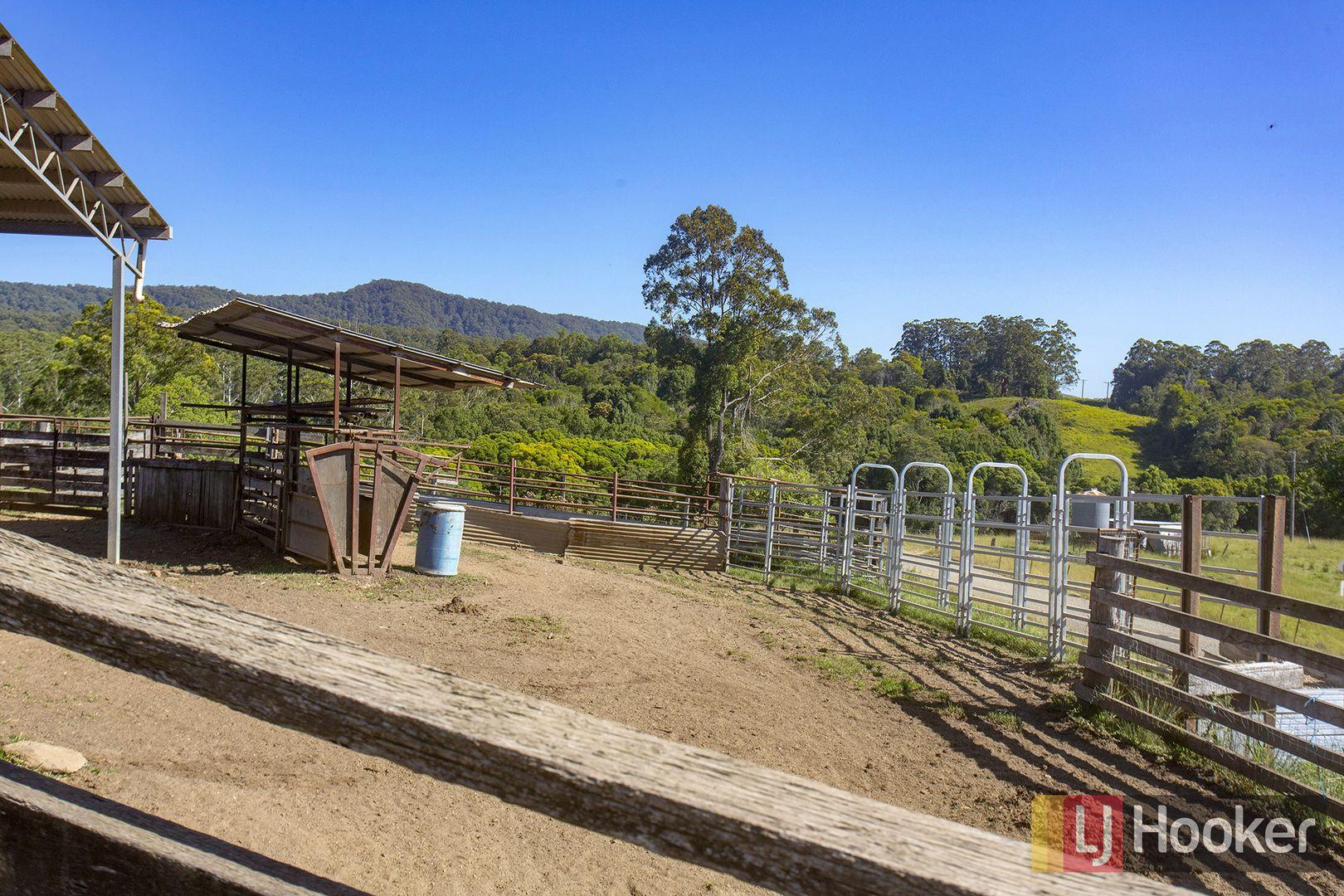 657 Newee Creek Road, Newee Creek NSW 2447, Image 1