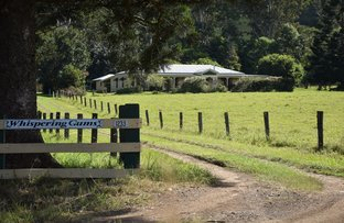 Picture of 1233 Collins Creek Rd, Collins Creek NSW 2474