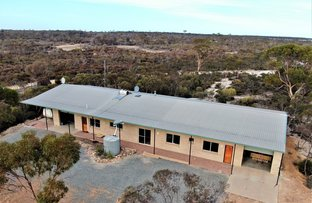 Picture of 20 May Street, Newdegate WA 6355