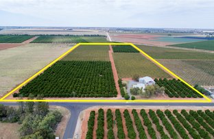 Picture of 1716 White Road, Tharbogang NSW 2680