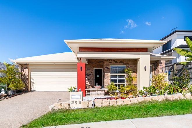 Picture of 255 Dublin Avenue, SPRING MOUNTAIN QLD 4300
