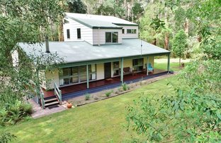 Picture of 113 Badger Weir Road, Healesville VIC 3777