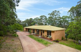 Picture of 207 Blackrange Rd, Bega NSW 2550