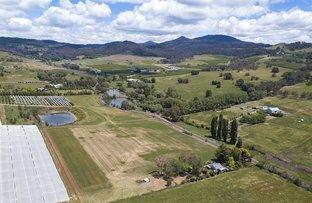 Picture of 361 Lake Canobolas Road, Orange NSW 2800