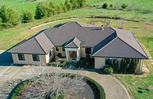 Picture of 434 Woomargama Way, Woomargama NSW 2644