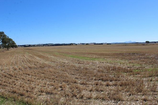 Picture of Forans Road, TARRINGTON VIC 3301