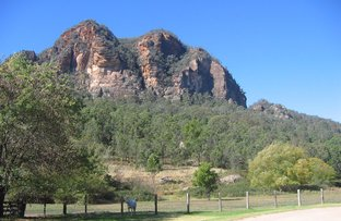 Picture of 'The Elms'/5006 Bylong Valley Way Growee, Rylstone NSW 2849