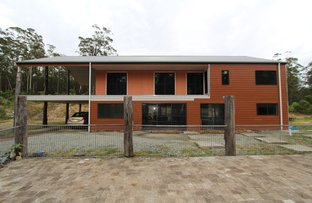 Picture of Possum Brush NSW 2430