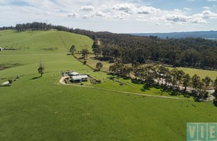 Picture of 69 The Glen Road, Pipers River TAS 7252