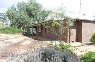 Picture of 42 Ford Street, York WA 6302