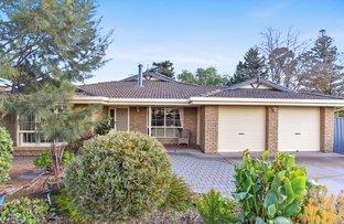 Picture of 47 Abbott Avenue, Mclaren Vale SA 5171