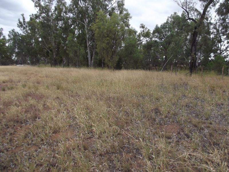 Lot 20 Melrose Drive, Clermont QLD 4721, Image 0
