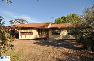 Picture of 21 Kirwan Crescent, Port Augusta West SA 5700