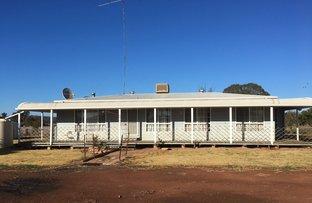 Farm 8833 Mid Western Highway, Rankins Springs NSW 2669