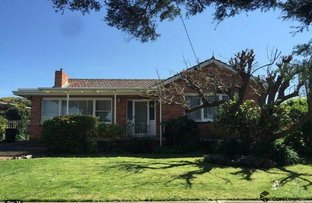 Picture of 20 Hamlyn Avenue, Hamlyn Heights VIC 3215