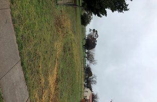 Picture of Lot 104 Gundagai Street, Adelong NSW 2729