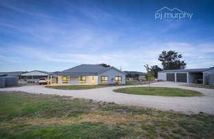 Picture of 290 Fanning Lane, Wooragee VIC 3747