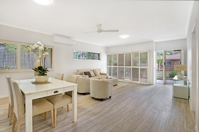 Picture of 3/74 Wardoo Street, ASHMORE QLD 4214