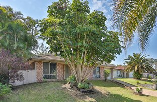 Picture of 33 Hinchcliffe Street, Tanah Merah QLD 4128