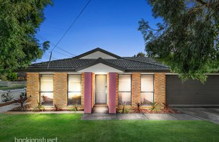 Picture of 8 Madden Street, Seaford VIC 3198