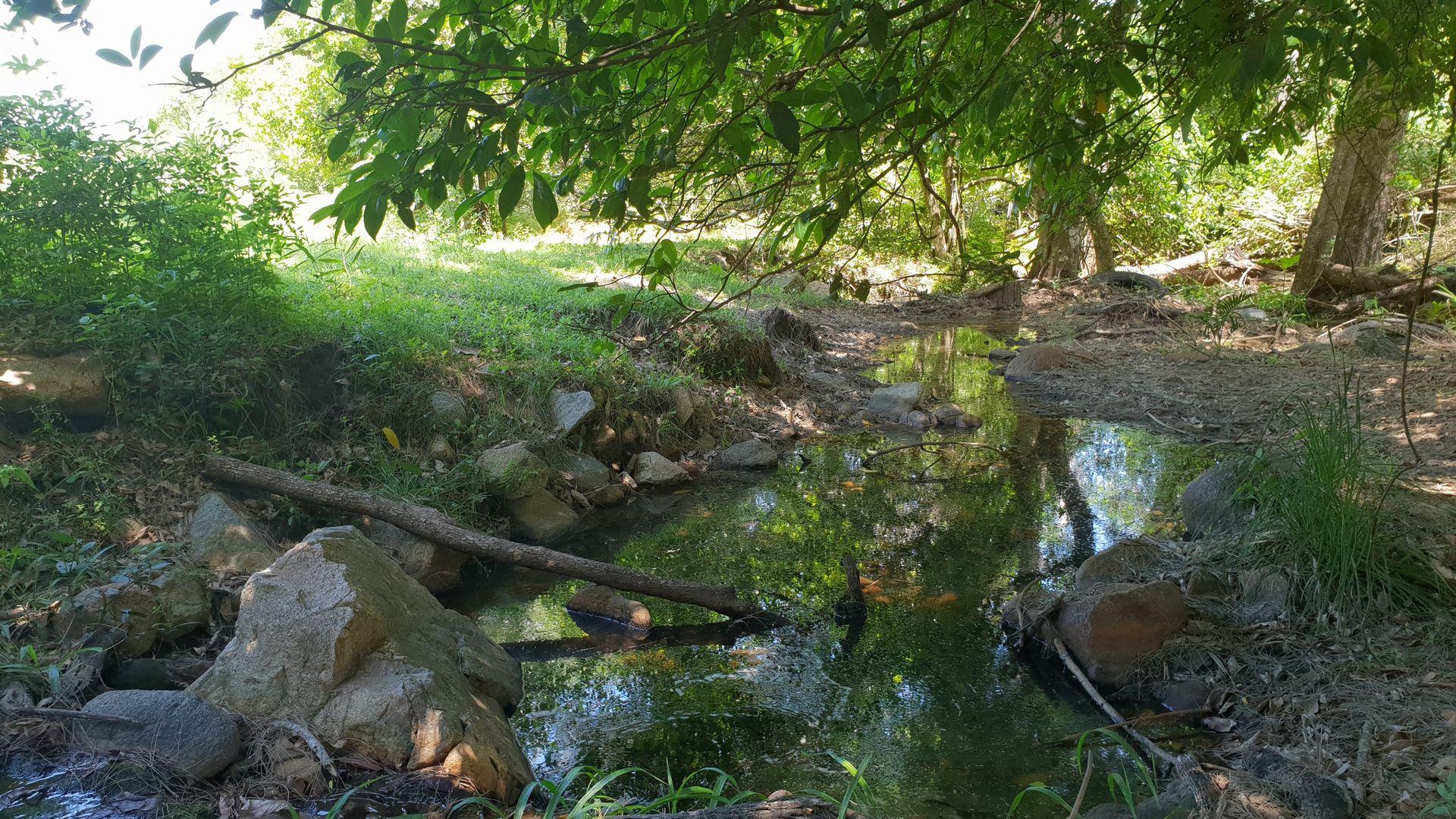 Sandy Creek QLD 4515, Image 1