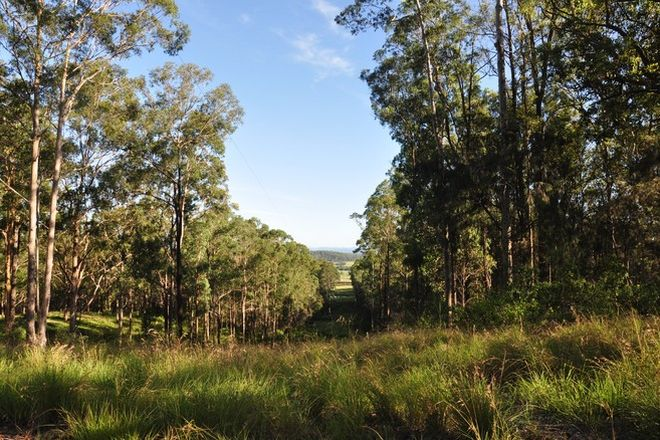 Picture of 718 Pipers Creek Road, DONDINGALONG NSW 2440
