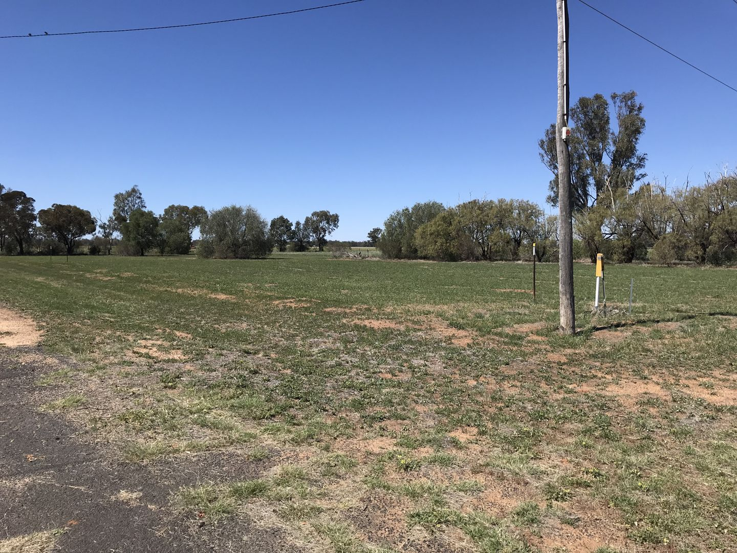 Lot 3 and 12 National Park Road, Curban NSW 2827, Image 0