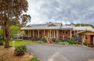 Picture of 397* Commercial Road, Yarram VIC 3971