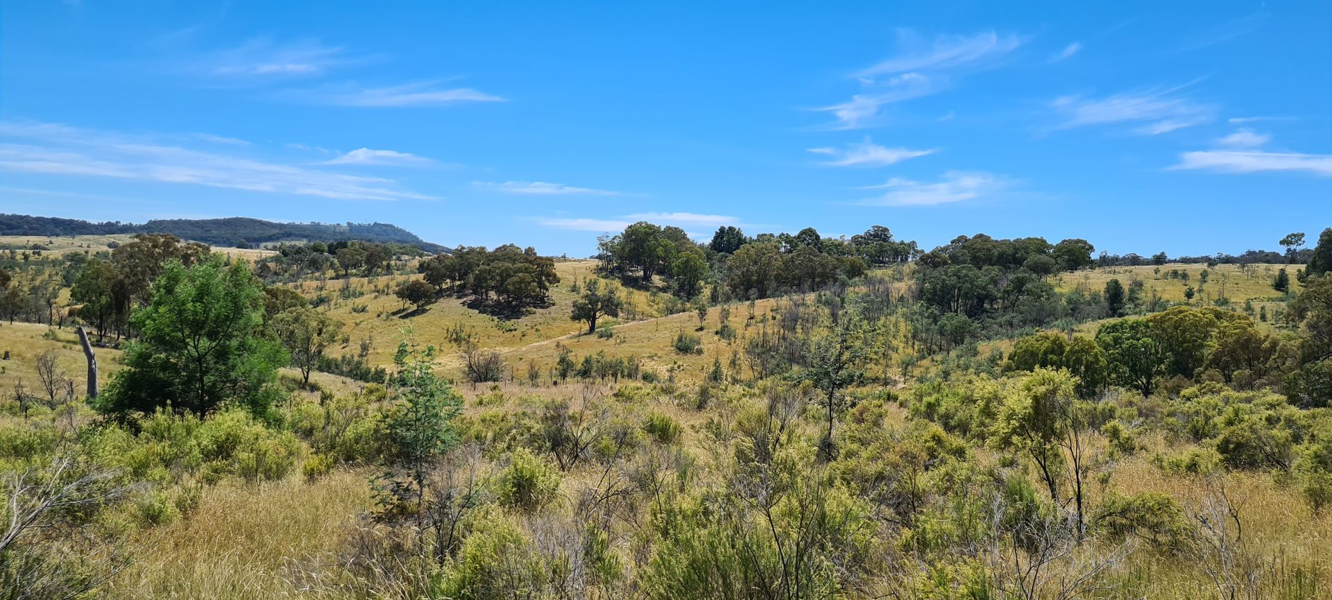 2108 Campbells Creek Road, Mudgee NSW 2850, Image 1