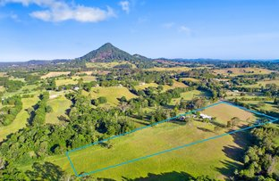 Picture of 163 Cooroy Mountain Road, Cooroy QLD 4563