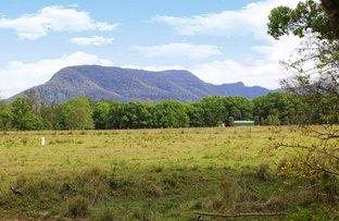 Picture of Lot 1, 50 Gungas Road, Nimbin NSW 2480