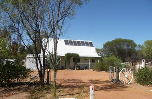 Picture of 16 Whitfield Street, Mt Hardey, York WA 6302