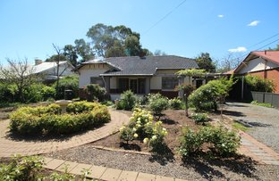 Picture of 18 Cranbrook Avenue, Millswood SA 5034