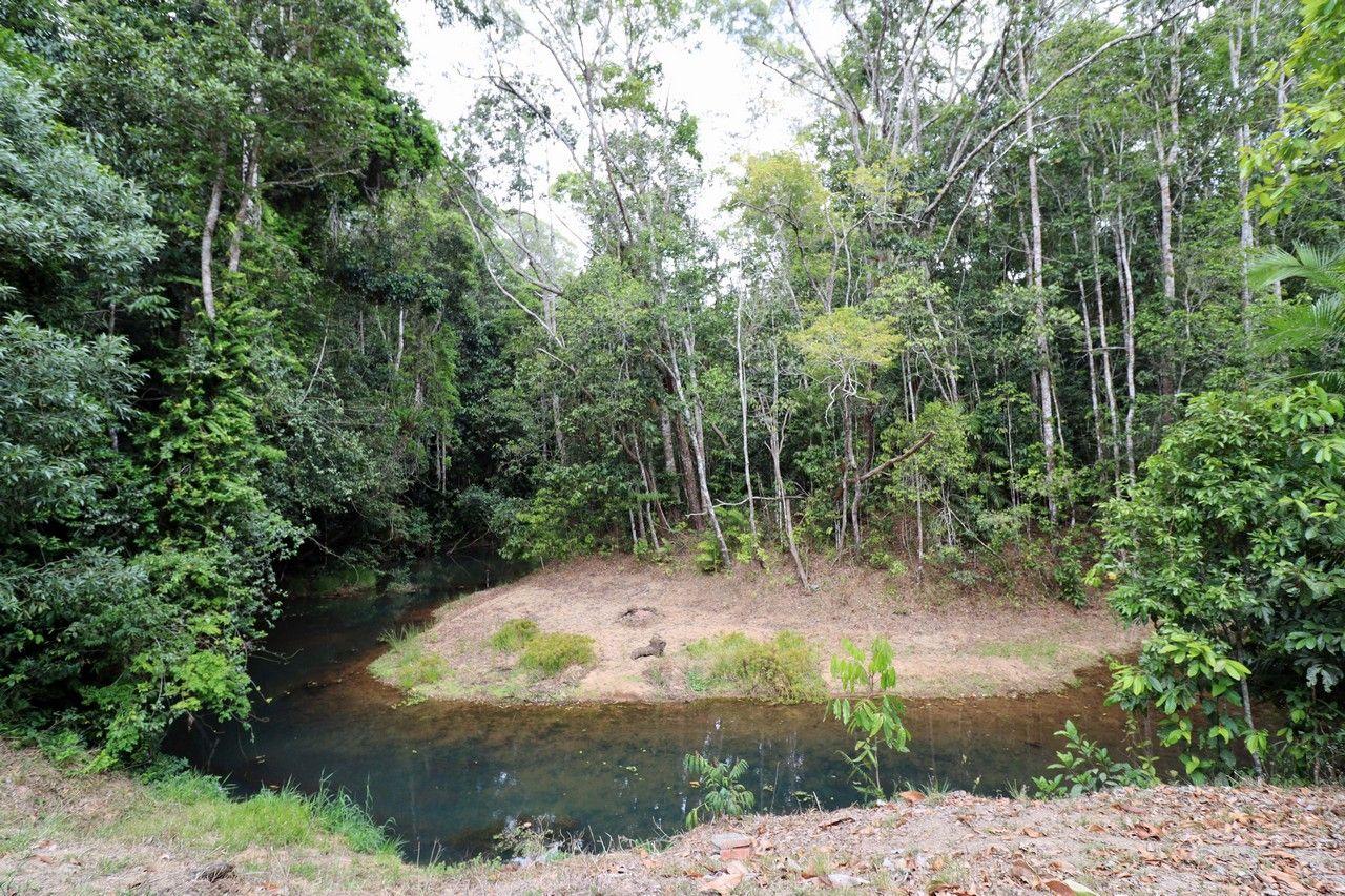 Danbulla QLD 4872, Image 0