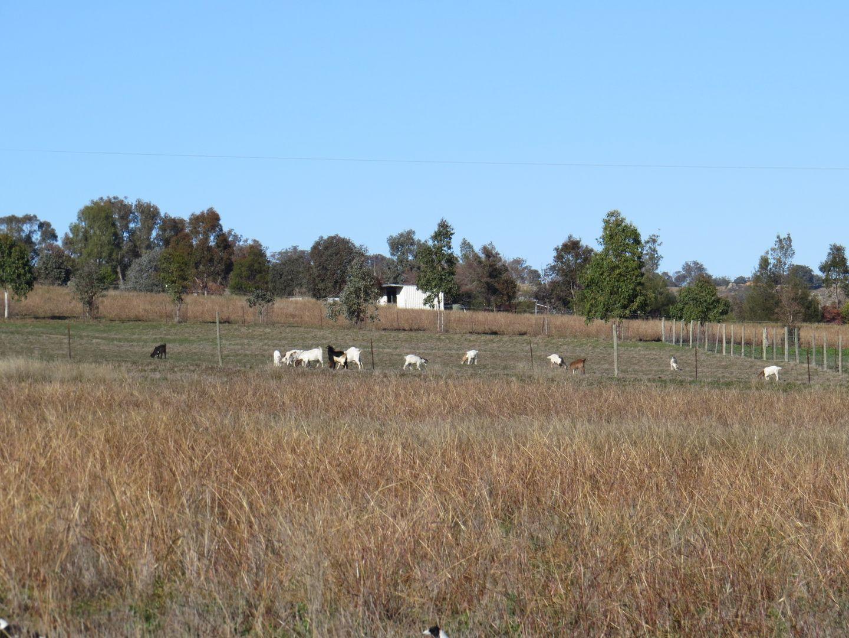 38 Milburn Creek Road, Woodstock NSW 2793, Image 2