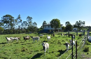 Picture of 53 Keenes Rd, Bauple QLD 4650