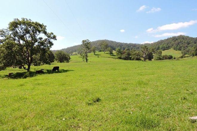 Picture of WAUKIVORY NSW 2422