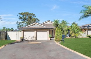 Picture of 23 Mawbanna Close, West Hoxton NSW 2171