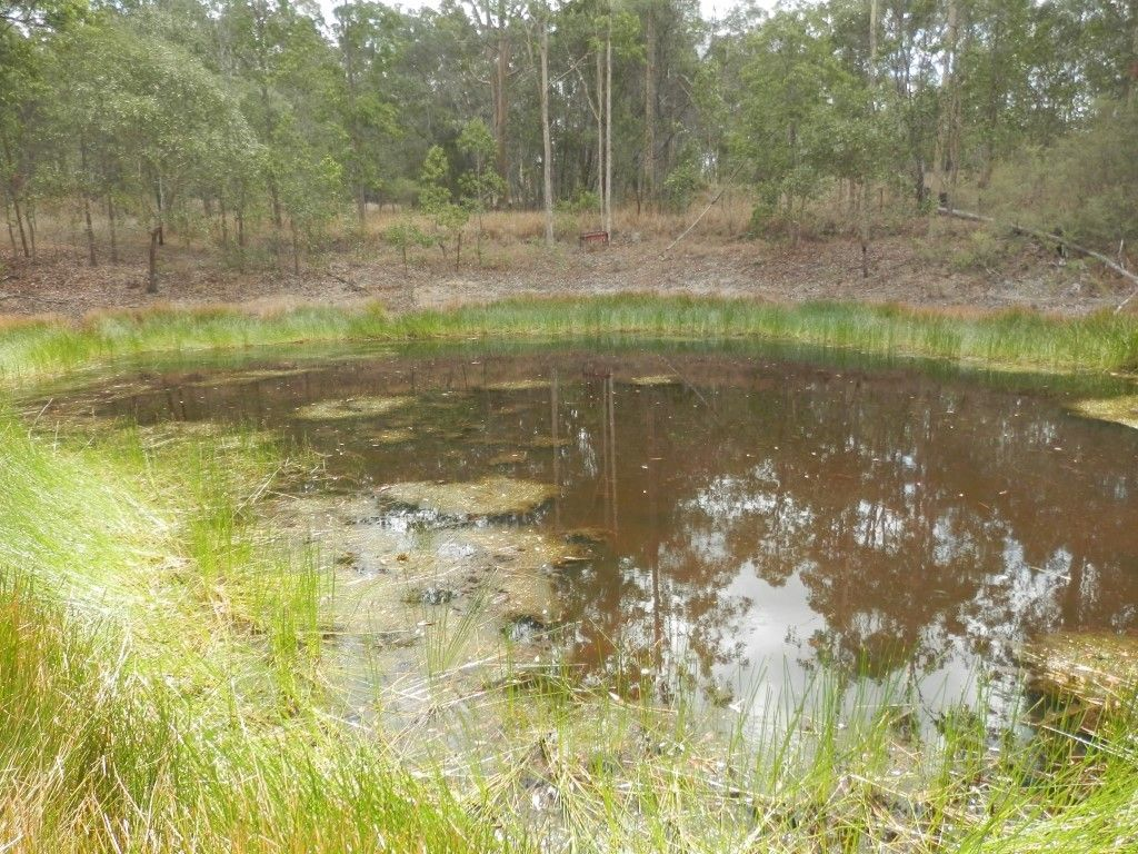 62 Ewingar Ridge Rd, Ewingar NSW 2469, Image 0