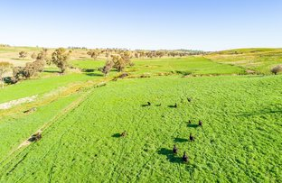 Picture of 395 Old Yullundry Road, Cumnock NSW 2867