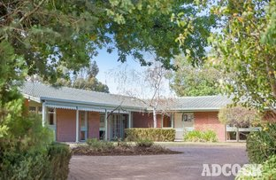 Picture of 37 Pedare Park Road, Woodside SA 5244