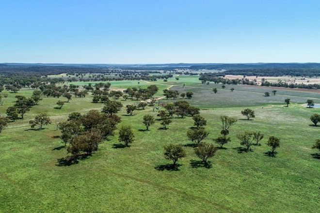 Picture of 1799 Digilah Road, DUNEDOO NSW 2844