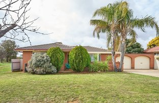 Picture of 39 Bamarook Crescent, Glenfield Park NSW 2650