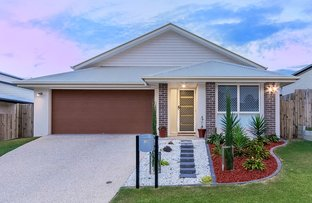 32 Freedman Drive, Willow Vale QLD 4209